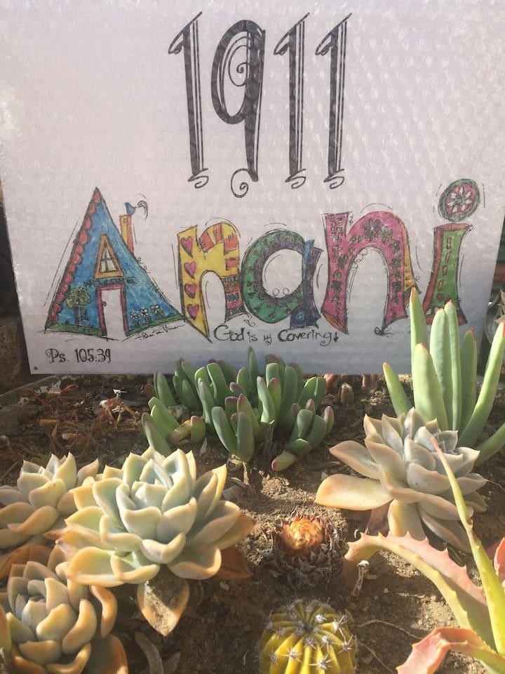 Cecilia's Home - Anani