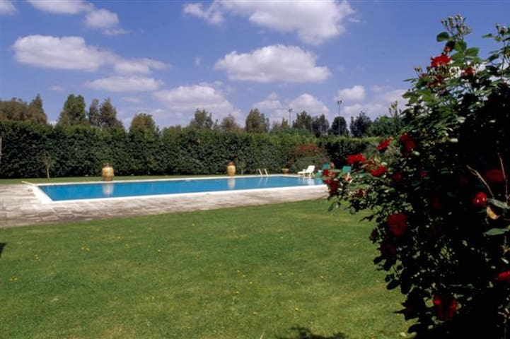 apartment in a villa of 600th - Lecce - Bed & Breakfast