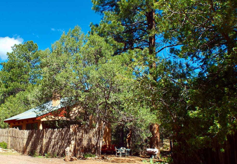 Your mountain haven sits behind a traditional coyote fence. Private and secluded.