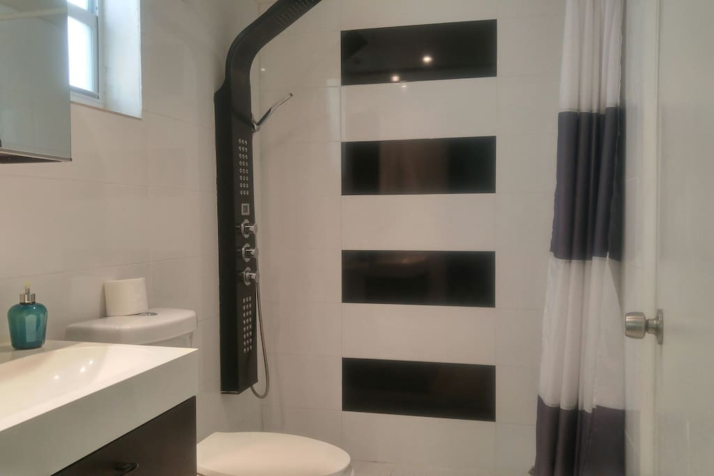 Brand new bathroom with spa shower.