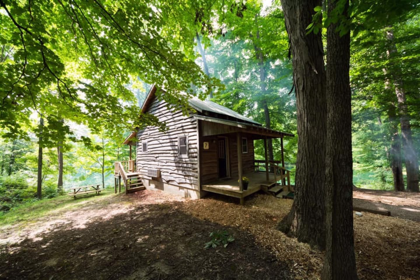 enjoy the rustic cabin with air conditioning and heat
