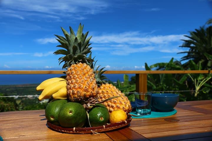 Villa Payanké vue panoramique mer piscine 4 ch