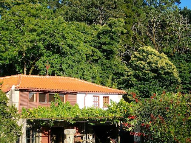 Cottage in the town center - Ponte de Lima - กระท่อม