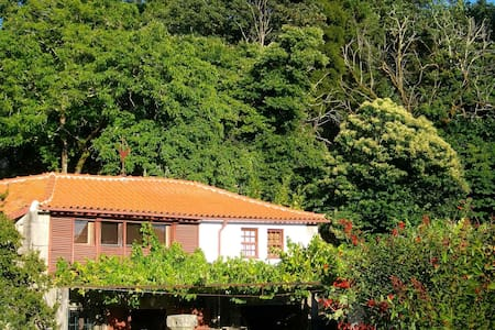 Cottage in the town center - Ponte de Lima
