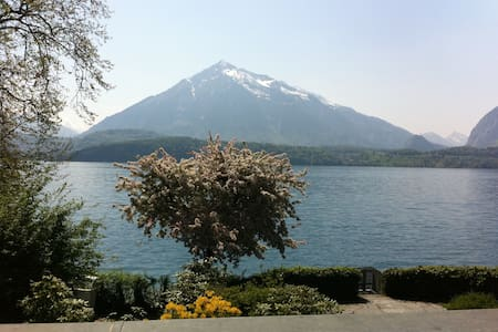 Villa on shore of Lake of Thun for home office