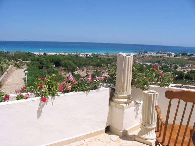 Séjour de Réves à Kélibia-Tunisie. - Kélibia - Rumah