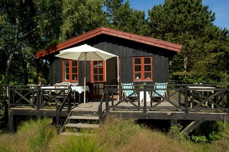 Summer cottage by beach and nature - Zomerhuis/Cottage