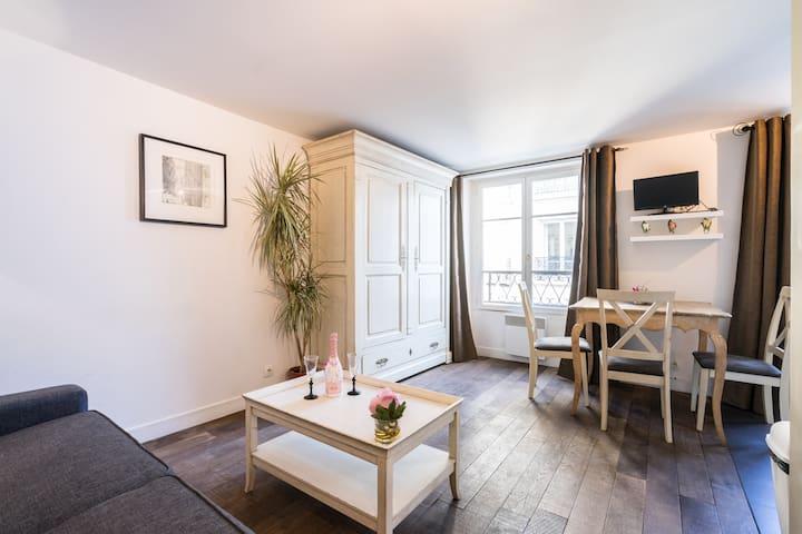 Shiny&Cosy flat in Le Marais!