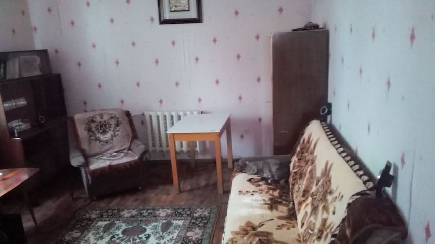Lovely room in city center - Chișinău - House
