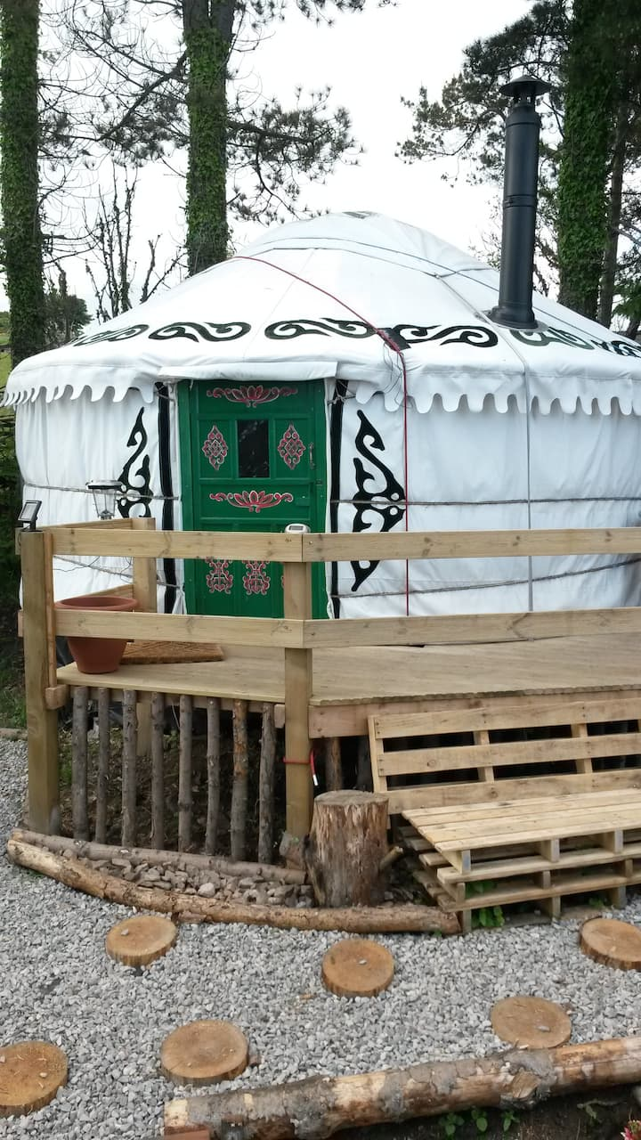 Glamping: The Tall Pines Yurt, Highlands, Scotland