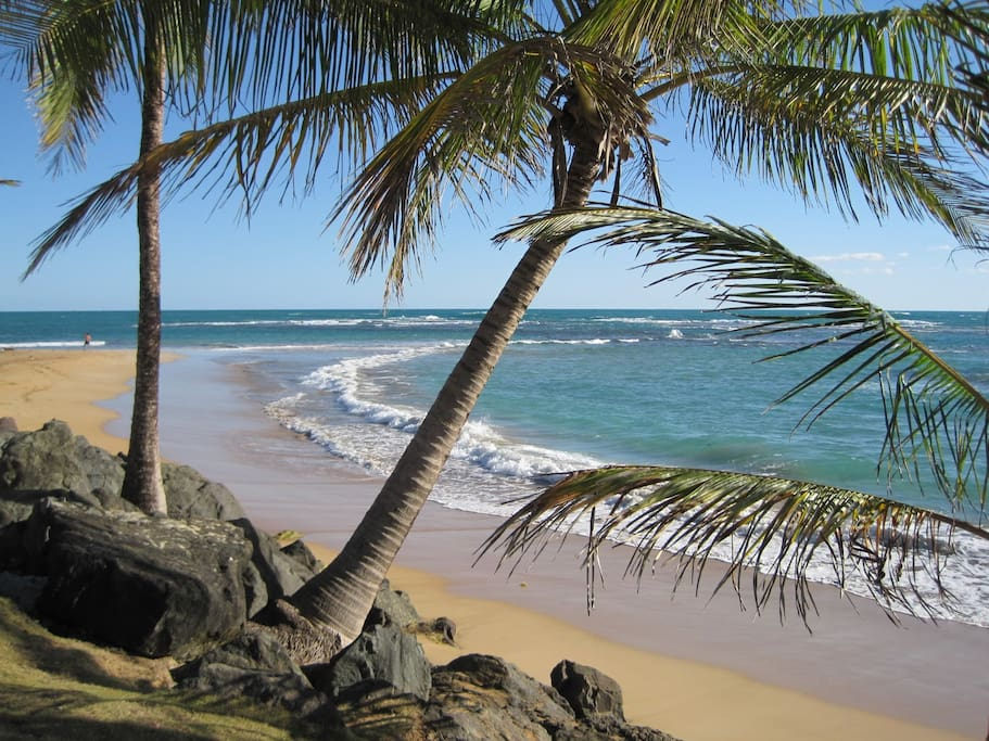 World famous beaches are minutes drive away.