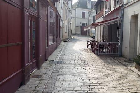 Villa Perenne a house for you - Saint-Aignan-sur-Cher - Hus
