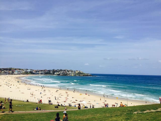 BONDI BEACH !! AMAZING ROOM!! HAPPY