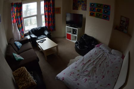 Large sofa-bed in a cosy flat - Bristol - Apartment