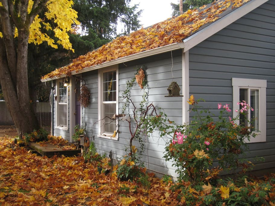 Autumn at the Cottage
