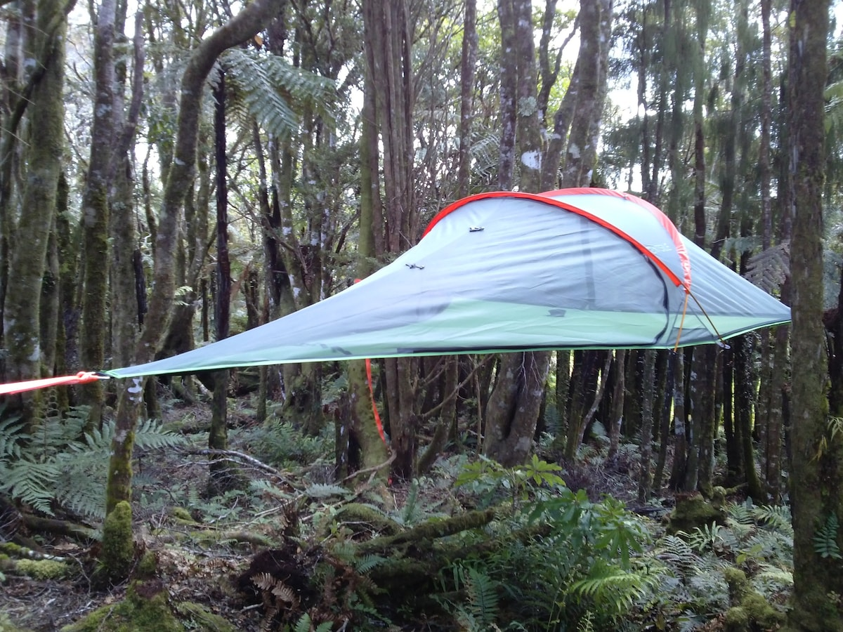 ... Tree tent - Pupu Rangi Nature Sanctuary & Sleep in a tree tent! - Tents for Rent in Kaihu Northland New ...