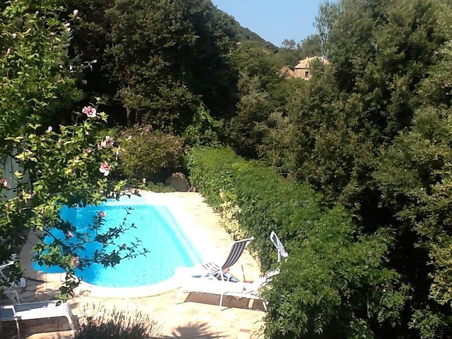 Bedroom In A Villa Swimming Pool Houses For Rent In Villanova Corsica France