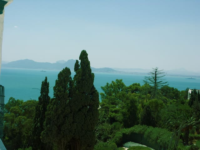 sidi bou said chambre jasmin  - Carthago - Bed & Breakfast