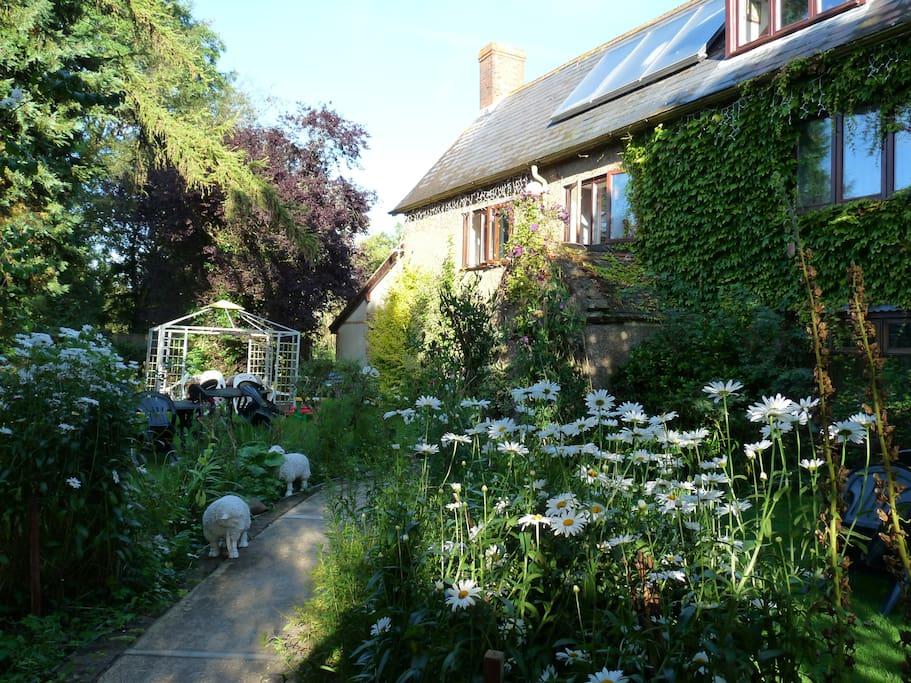 Hear the birds sing in our Country garden