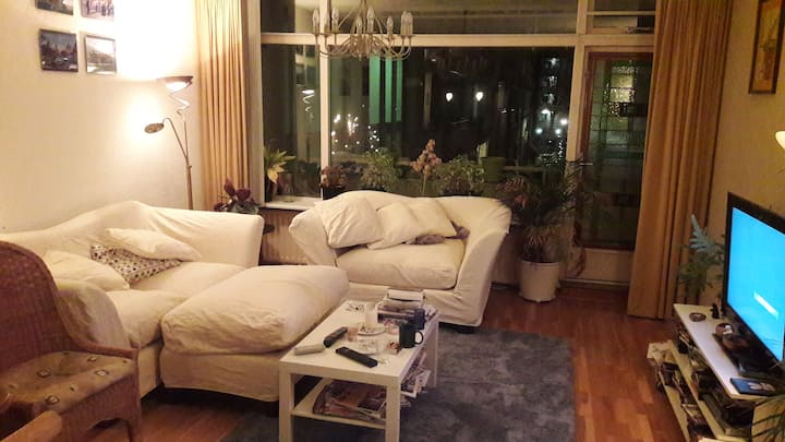 Nice 4 rooms appartment close to Amsterdam