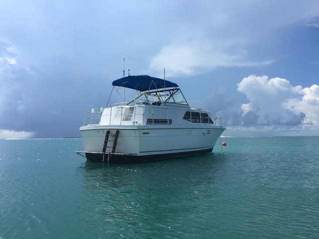 I'M ON A BOAT IN KEY WEST nature sunset stars love - Cayo Hueso - Barco
