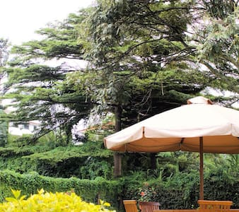 Gigiri Homestead - Nairobi - Bed & Breakfast