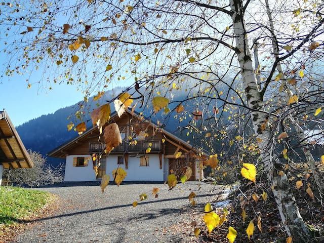 Cosy wooden chalet, with a view of the Mont Blanc