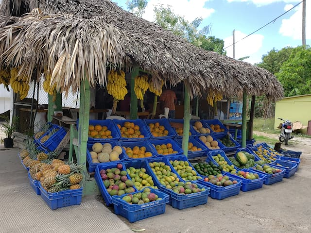 Fresh fruits and vegetables from local farmers