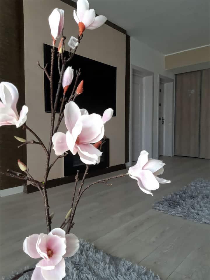 Luxury Romantic Apartament