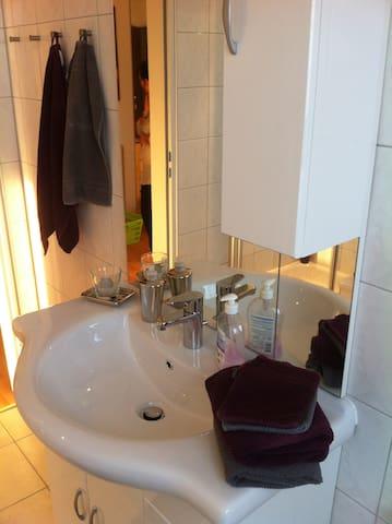 Apartmenthaus-Abendsonne ( gr. DG ) - Koblenz - Apartament