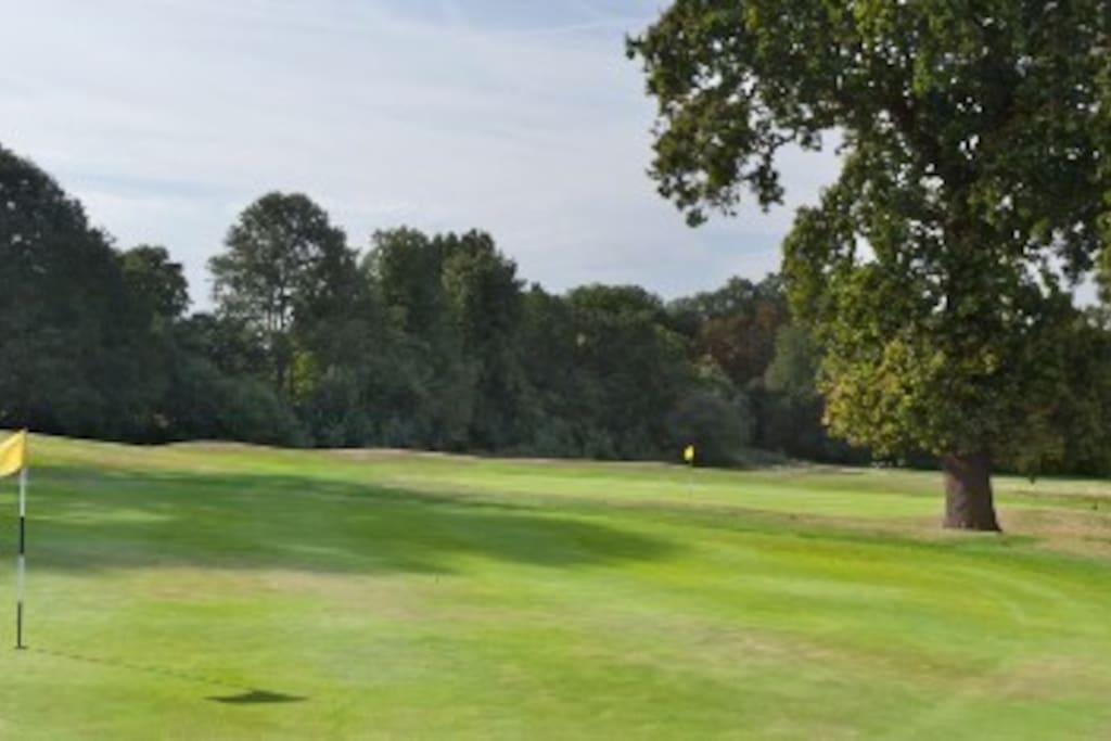 Richmond park golf?  -  5 minute walk. Try the driving range