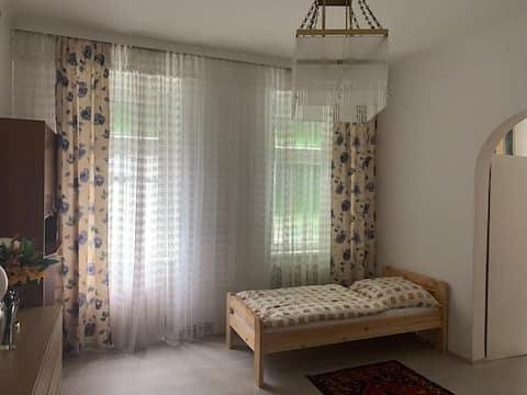 Cozy room in city centre-Prater