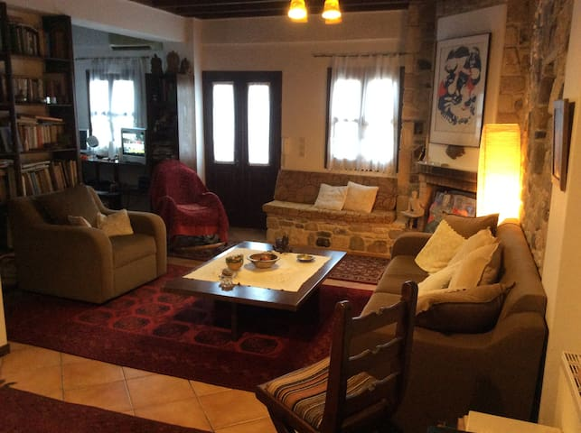 The Potter's  family house - Lagoudi Zia - Villa