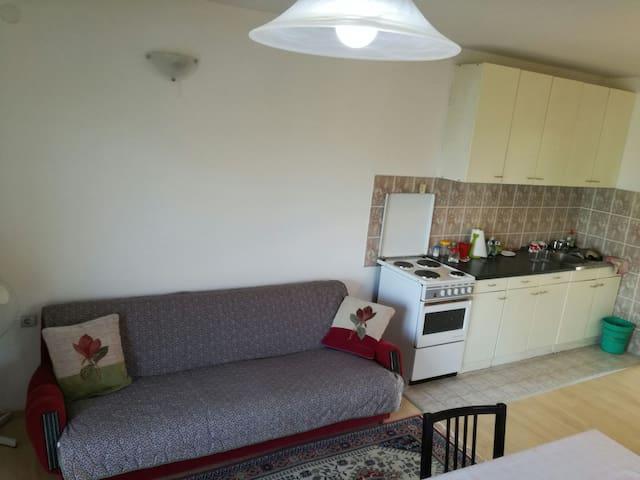 Maslina Rooms - Cheap accommodation - Smederevo - Flat