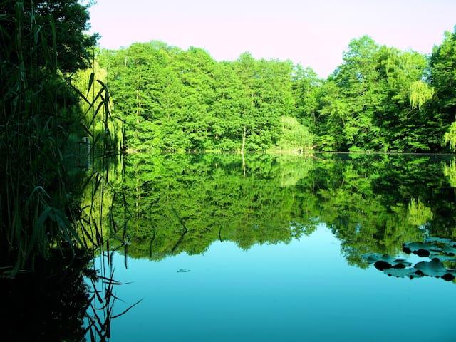 Luxury villa with private lake - Potsdam - Villa