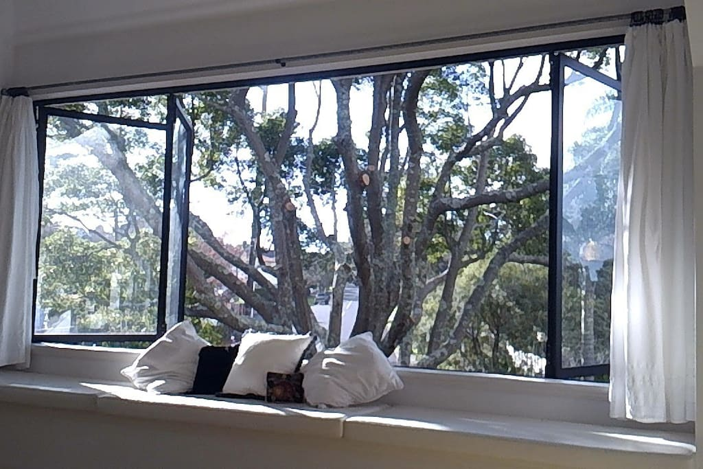 The window seat is a peaceful place to read, or just watch the tui showing off in the camphor tree