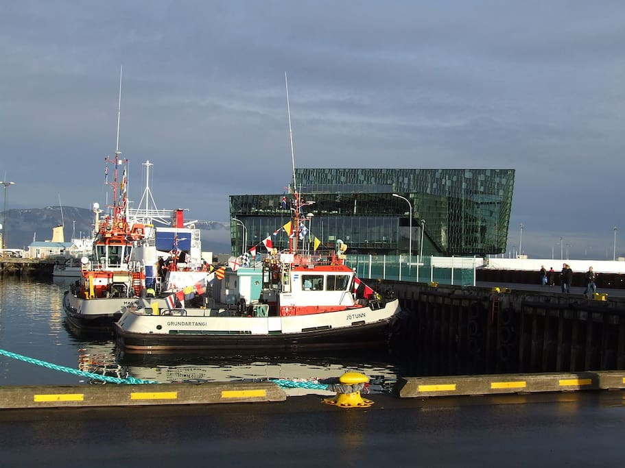 The harbour and Harpa - the concert hall