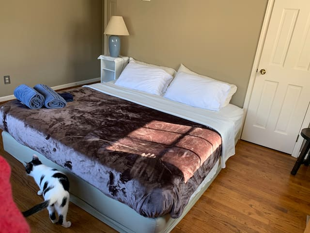 Spacious Bedroom, Close to Carrboro