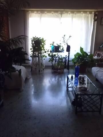 Habitac amplia, luminosa  pta. alta de la casa