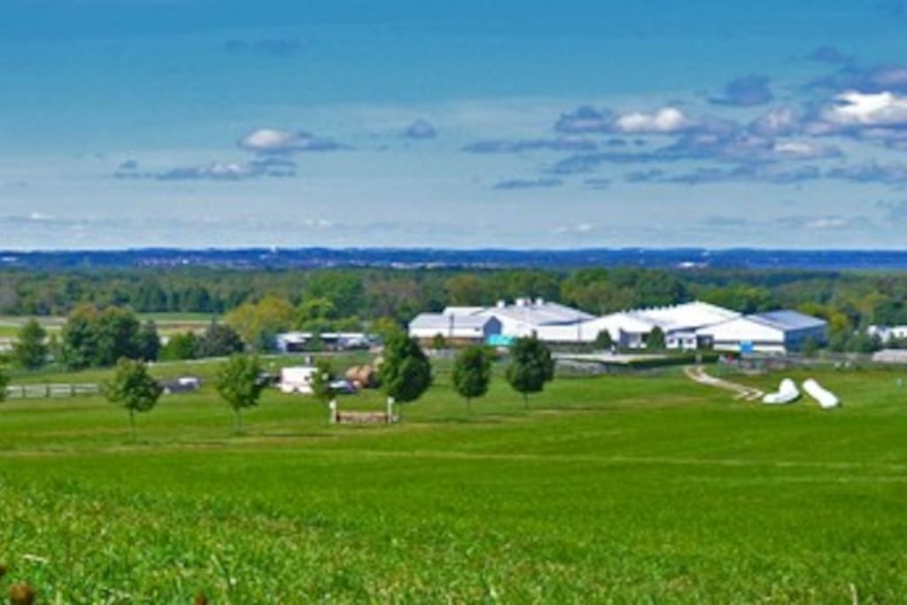 View of our 100 acre horse farm