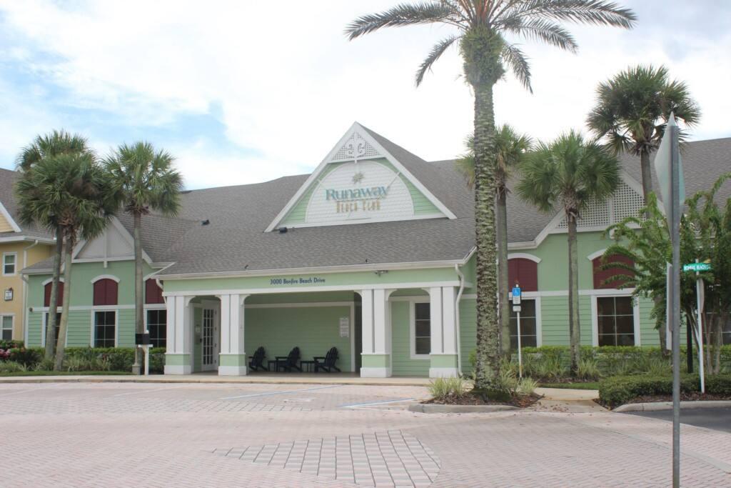 Palm Tree, Tree, Building, Downtown, Neighborhood