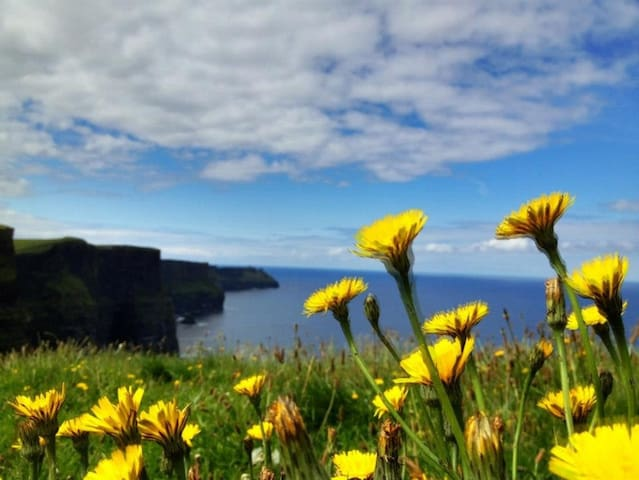 Cliffs of Moher can be seen from my home