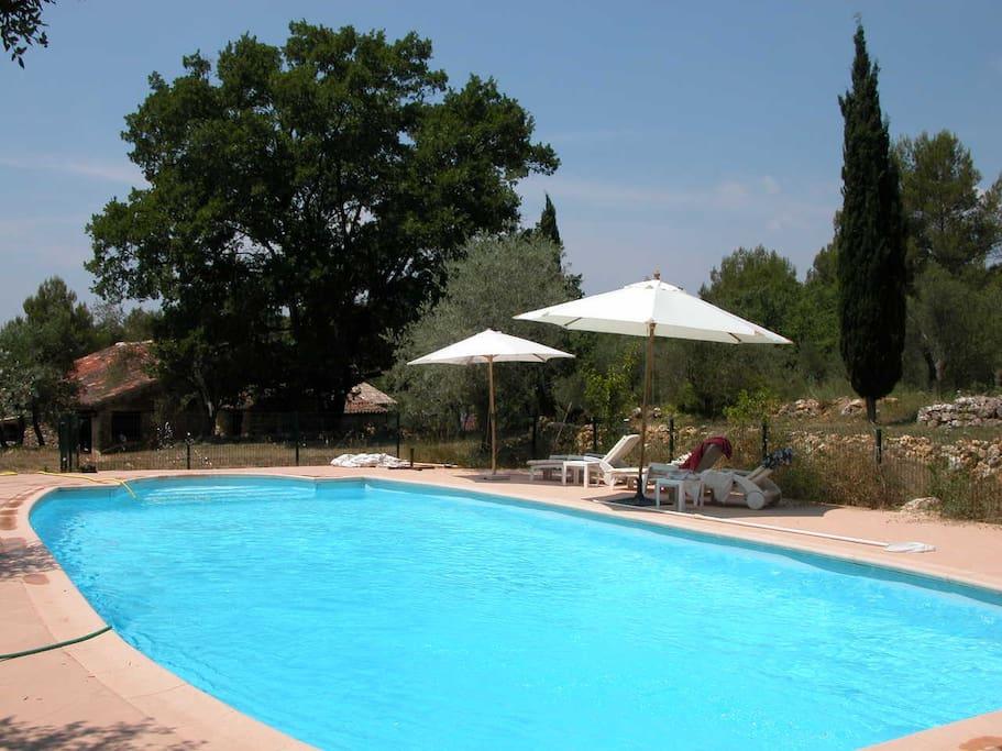 La piscine, the swiming pool, la piscina.