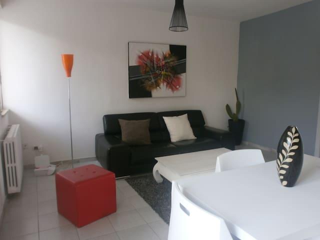 sunny living room with window door and windows