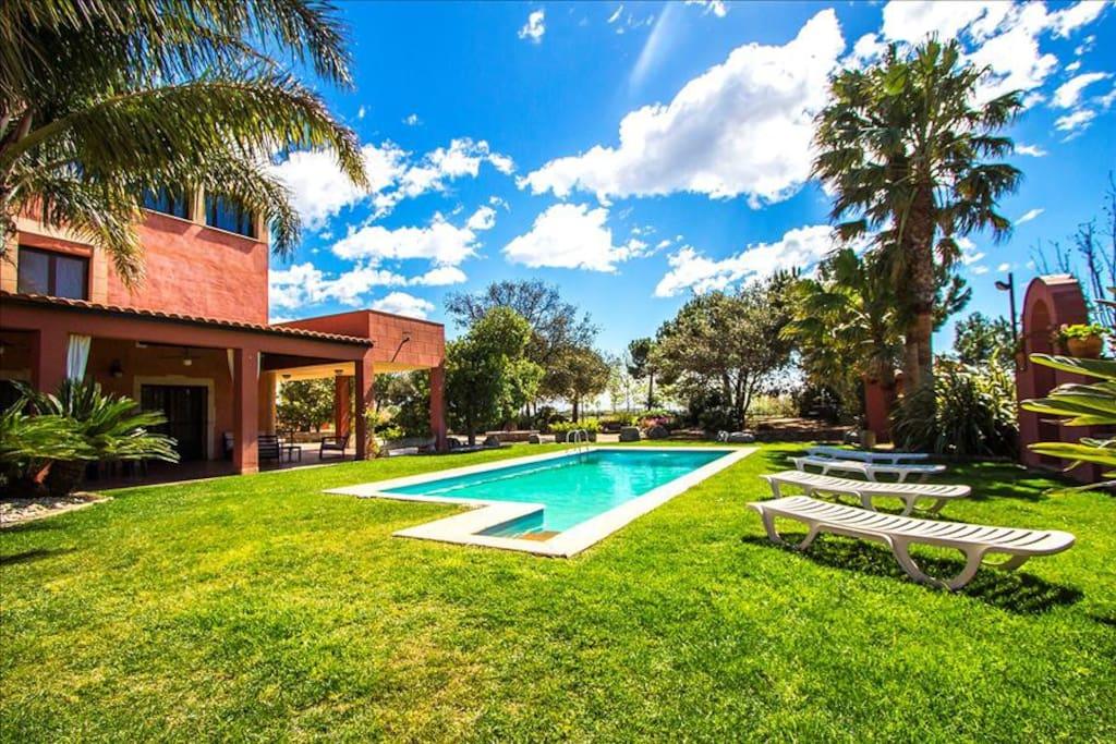 Sunbathing area and pool views