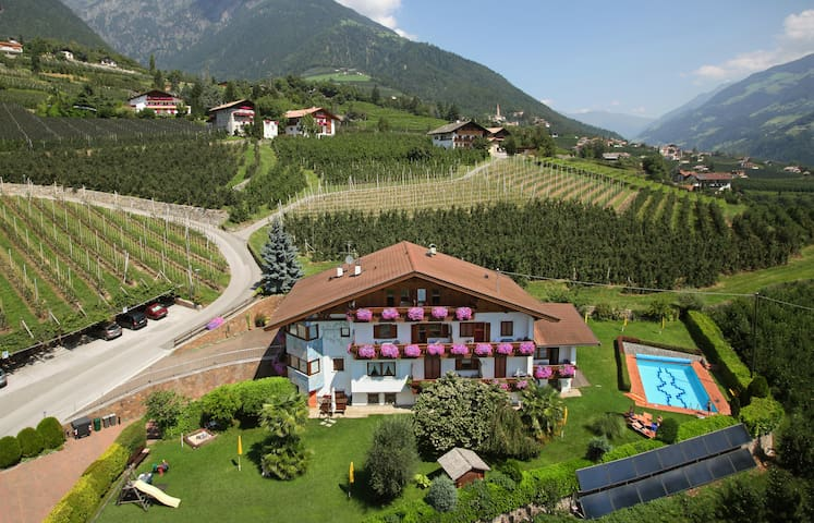 Planning an unforgettable vacation  - Dorf Tirol - Apartament