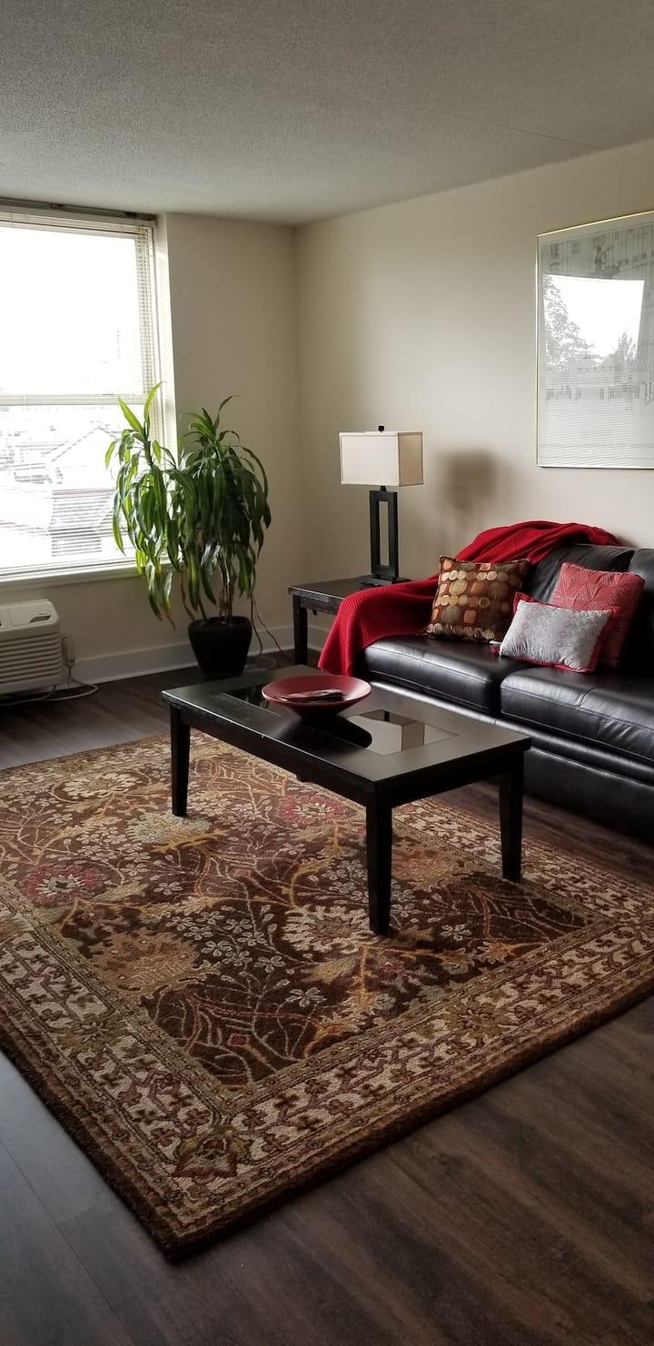 Cosmopolitan Apartments 511S One bedroom
