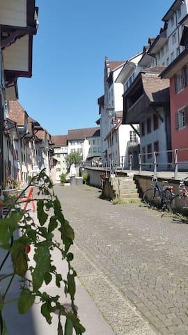Renovierte Wohnung im historischem Rahmen - Aarau - Flat