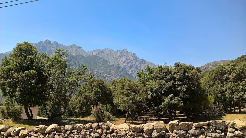 Séjour paisible à Moltifao, entre mer et montagne