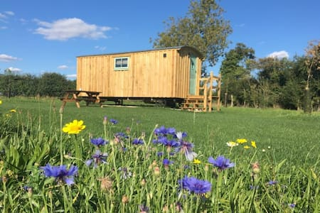 Honeysuckle Farm Holidays Shepherds Hut 6